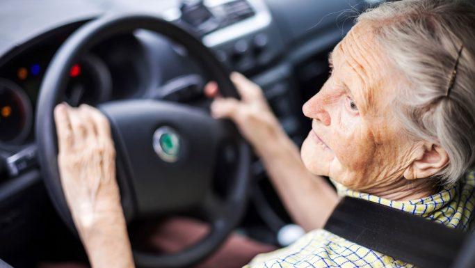 regler for ejer og bruger af bil