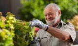 Ældre mand passer haven